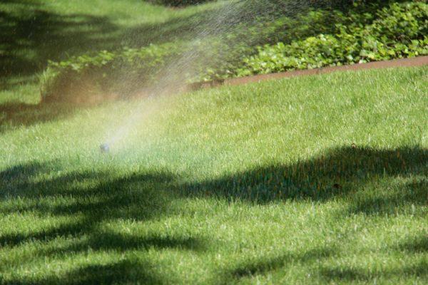 Heinen Irrigation  - 11