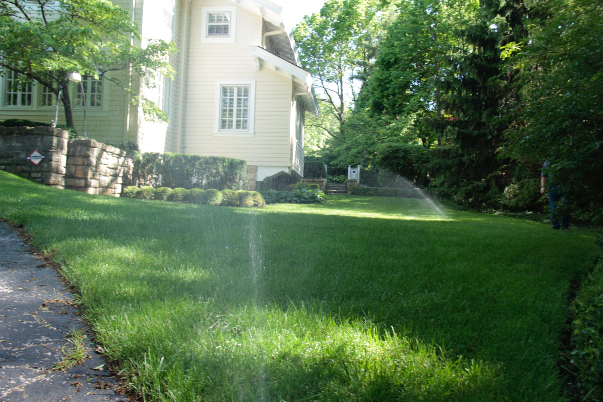 Spring Into Action – Time to Revitalize Your Lawn!