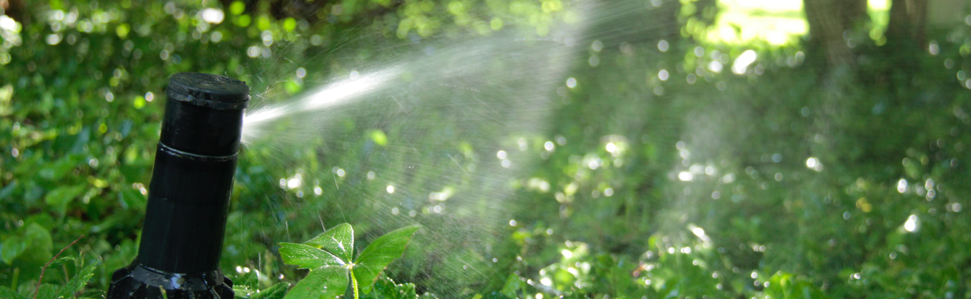 Book now for a new Irrigation System!
